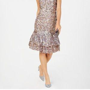 Adrianna papell Petite embellish dress size 10P